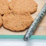 Seitan made with Vital Wheat Gluten