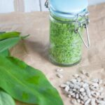 Wild Garlic Pesto | ElephantasticVegan.com
