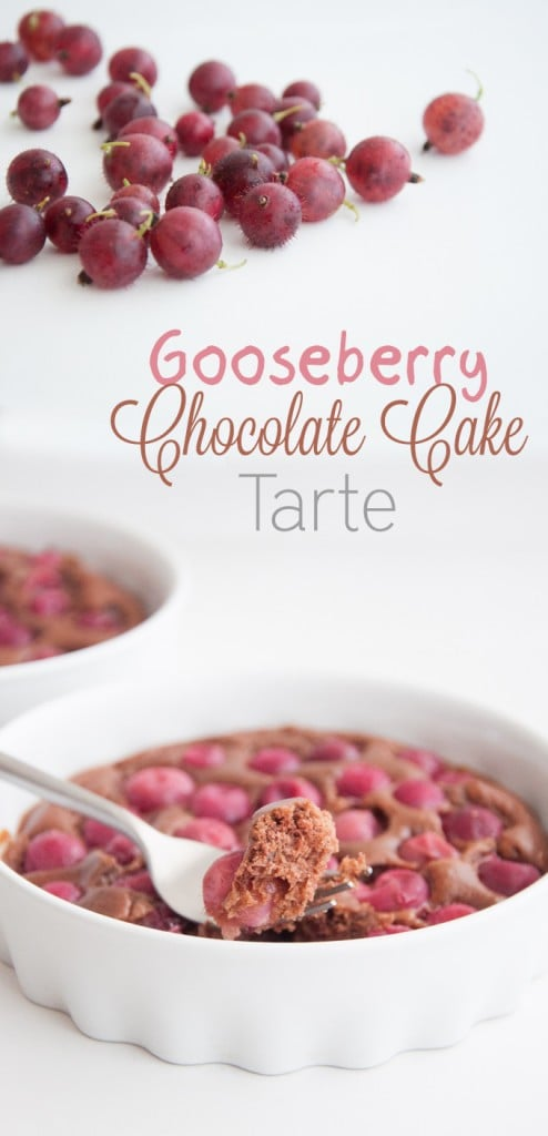 Gooseberry Chocolate Cake Tarte