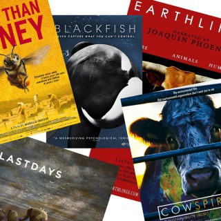 [Veginners] 5 Must-See Documentaries about Animals