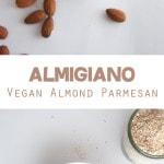 Almigiano - Vegan Almond Parmesan | ElephantasticVegan.com
