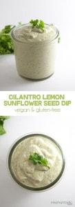 Vegan Cilantro Lemon Sunflower Seed Dip  ElephantasticVegan.com