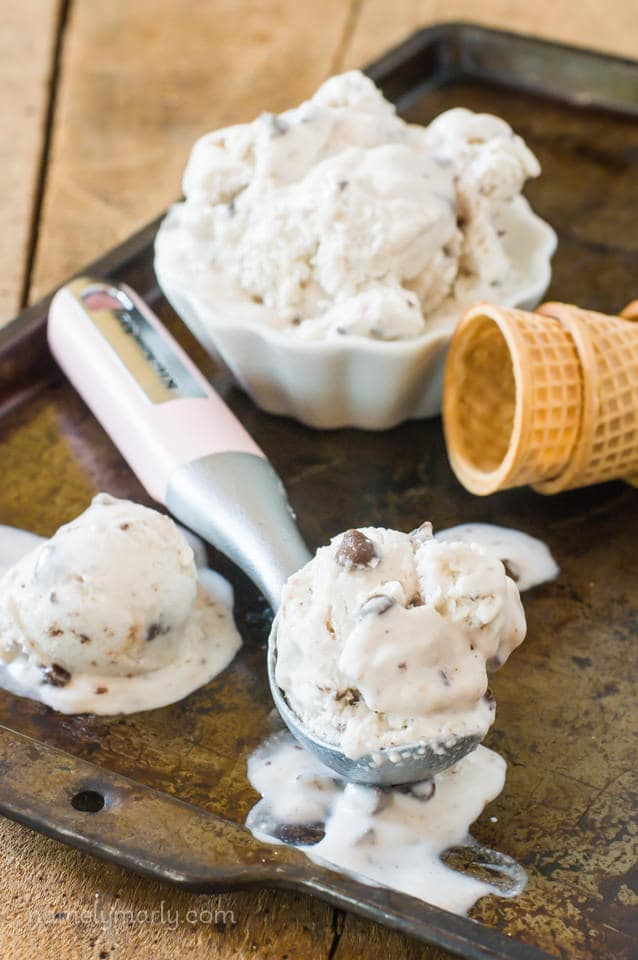 No Churn Vegan Chocolate Chip Ice Cream - Namely Marly