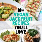 10+ Vegan Jackfruit Recipes You'll Love | ElephantasticVegan.com