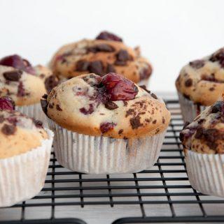 Cherry Chocolate Muffins