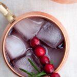 Cranberry Moscow Mule | ElephantasticVegan.com