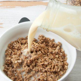 vegan gingerbread granola and homemade almond milk