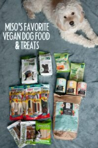 White Dog with vegan dog food and treats