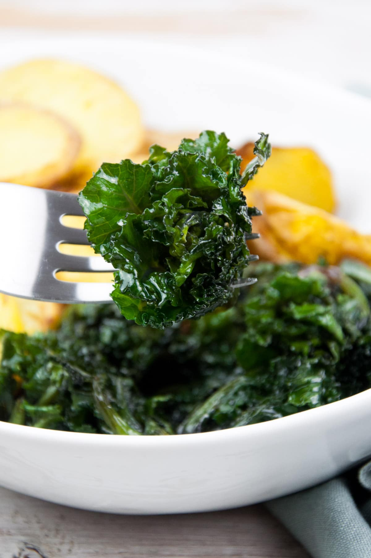 Kalettes - Flower Sprouts